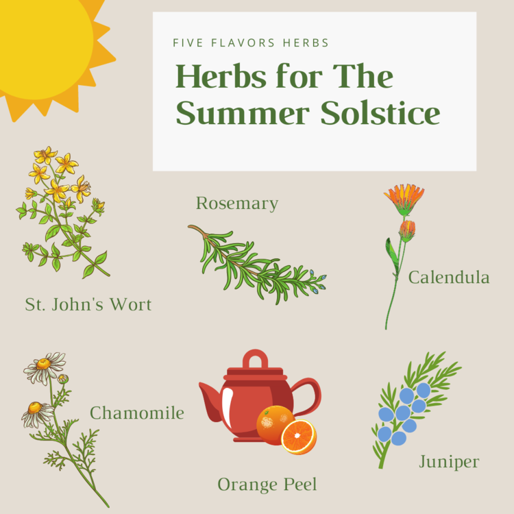 illustration-herbs-for-the-summer-solstice